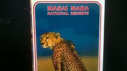 SAFARI MAP CARTE MASAI MARA NATIONAL RESERVE  KENYA - CARTE PLASTIFIÉE ET ILLUSTRÉE  KENYA AFRIQUE AFRICA - Cartes