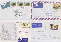 SWAZILAND - Lot De 9 Enveloppes Timbrées - Papillon - Cochon - Peinture Rupestre - Butterfly - Pig - Rock Paintings - Swaziland (1968-...)