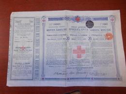 Société Serbe De La Croix Rouge - Russia