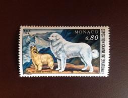 Monaco 1977 Dogs Dog Show MNH - Perros