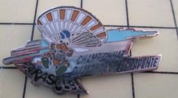PIN410D Pin's Pins / De Belle Qualité Et Rare : SPORTS / PARACHUTISME CHAMPIONNAT DU MONDE DE PARAPENTE à Lons ? - Parachutting