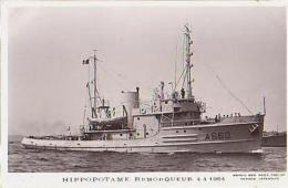 Remorqueur        704        Remorqueur Hippopotame - Remorqueurs