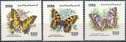 Syrië  Vlinders - Vlinders