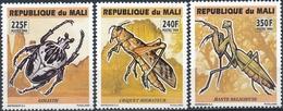 Mali  Insecten - Insecten