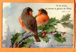 HB181, Illustrateur C. Klein, Rouge-Gorge, Oiseau, Bird, 1303, Non Circulée - Klein, Catharina