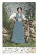 19476 - Appenzellerin Appenzelloise Costume Tissu Carte En Relief - AI Appenzell Rhodes-Intérieures