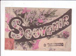 CPA RARE 1907 - UN DOUX SOUVENIR DE TAILLEBOURG - Autres Communes