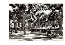 Cpm - 06 - VENCE - La Place Du Grand Jardin - Terrasse Café Moto Mobylette Animation - Vence