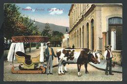 +++ CPA - Portugal - MADEIRA - Funchal - Carro De Bois   // - Madeira