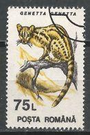 Romania 1993. Scott #3841 (U) Animal, Genetta Genetta, Genet * - 1948-.... Républiques