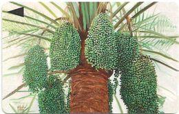Bahrain - Al Khalal Palm Tree, 41BAHS, 1997, Used - Bahrein