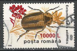 Romania 2000. Scott #4375 (U) Insect, Entomoscelis Adonidis * - 1948-.... Républiques