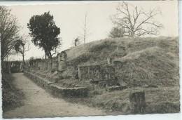 Orrouy-Ruines De Champlieu-Temple D'Apollon (CPSM) - Autres Communes