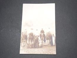 EGYPTE - Carte Photo De Touristes Sur Chameaux En 1910 - L 14516 - Egypt