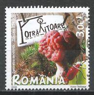 Romania 2008. Scott #5016 (U) Gyromitra Exculenta, Mushrooms - Oblitérés
