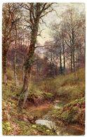 OILOGRAPH : WOODLAND SCENES SERIES - EVENING SOLITUDE - Trees