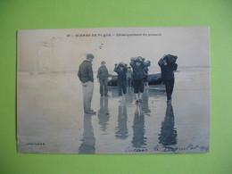CPA  Scène De Plage   Débarquement Du Poisson  Calais  1907 - Fishing