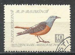 Romania 1959. Scott #C60 (U) Bird, Rock Thrush * - Poste Aérienne