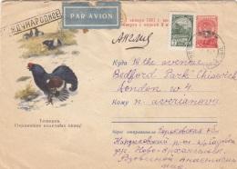 RUSSLAND 1951? - 40 K Ganzsache + 2 K Auf Schmuckbrief (Auerhahn), Gel.v.Russland N. London - 1923-1991 USSR