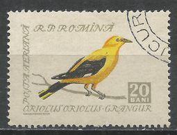 Romania 1959. Scott #C61 (U) Bird, European Golden Oriole * - Poste Aérienne