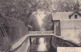 Maldegem, Maldeghem, De Eede Door Het Park (pk43534) - Maldegem
