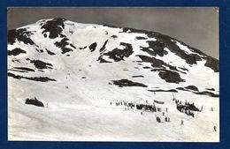 Suisse. Grimsel-Skirennen. Siedelhorn-Abfahrtspiste. (Pub. Hôtel Grimsel Hospiz). 1947 - BE Berne