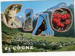 U2476 Cartolina Gogne (aosta) Illustrata CIAO CON ANIMALI: Bouquetin Steinbock Steinwild Stambecco Steenboks - Italia