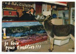 """Humour--"""" Je Bois Pour Oublier!!! """" (âne Au Bar D'un Café) - - Humor"""