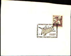 88619) Austria Fdc- Con 20pf.castelli..-con Bollo Speciale Esposizione Di Minerali E Fossili- Oberpullendorf -18/11/1983 - Minerali