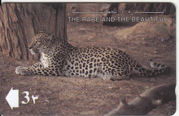 OMAN(GPT) - The Arabian Leopard, CN : 13OMNB/B(0 With Barred), Used - Oman