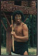 Einer Der Schönsten Männer Von New Zealand - Maori Challenge -  Ansichtskarte Ca.1984    (8332) - Océanie