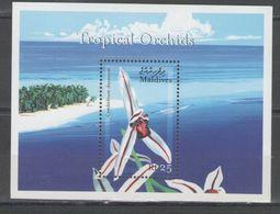 Maldives - FLOWER / ORCHID 2000 MNH - Maldives (1965-...)