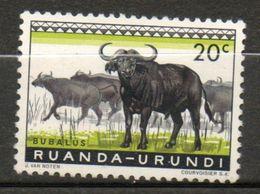 RUANDA-URUNDI  Buffles 1959-61 N° 206 - Ruanda-Urundi