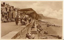 Devon Postcard  - The Esplanade - Sidmouth - Ref ND53 - Other