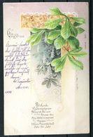 """CPA Color Grußkarte Österreich,Austria Gruß Aus ...1899 """"Gruss Aus Arnau-Blühende Kastanienkerzen"""" 1 Karte Used - Gruss Aus.../ Grüsse Aus..."""