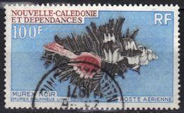 Nouvelle-Calédonie Poste Aérienne N° 105 Coquillage - Luftpost