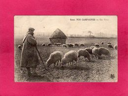 Nos Campagnes, Un Pâtre, Animée, Berger, Moutons, (M.T.I.L.) - Farmers