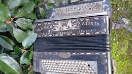Accordeon Ranco Antonio Vercelli Italia - Musical Instruments