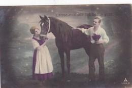 Laisse Moi Voir Tes Beaux Yeux! Couple Avec Cheval, Horse, Paard (pk43602) - Couples