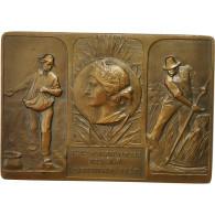 France, Medal, Société Commerciale D'Agriculture, Exposition, 1927, SUP - France