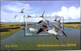 BIRDS-CASPIAN TERN AT ADAM'S BRIDGE-WORLD WETLANDS DAY-2016-MS-SRI LANKA-MNH-ABSL-7 - Marine Web-footed Birds