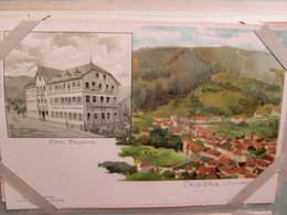 Triberg , Hotel Bellevue - Triberg