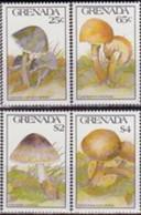 GRENADE  - Champignons : Leptonia Caeruleocapitata - Cystolepiota Eriophora - Volvariella Cubensis - Xerocomus - Mushrooms
