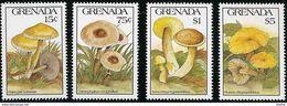 GRENADE - Psilocybe Cubensis - Chlorophyllum Molybdites - Xerocomus Hypoxanthus - Pluteus Chrysophlebius - Mushrooms