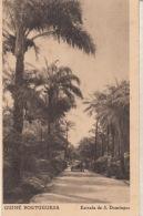 Guiné Portuguesa - Estrada De S. Domingos : Achat Immédiat - Guinea-Bissau