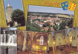 32  PAVIE / MULTIVUES / BLASON - France