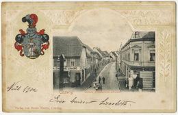 Coswig Untere Friederiken Strasse Edit Bruno Marin Embossed Arms Of Coswig To Bertholene Aveyron - Coswig
