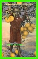 ENFANTS - JEUNE NOIR - HE'P YO'SE F TO GRAPEFRUIT IN SUNNY FLORIDA - TICHNOR QUALITY VIEWS - - Scènes & Paysages