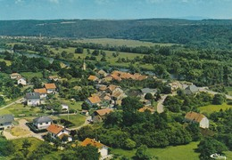 Longevelle Sur Le Doubs Vue Aèrienne - Other Municipalities