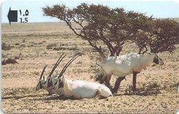 Oman - Arabian Oryx Animal - 34OMNN - 1997, 500.000ex, Used - Oman